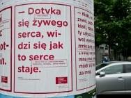 Plakaty / fot. Tomasz Korczyński