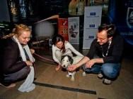 Katarzyna Wilk, Katarzyna Mirczak, Adam Palenta and dog Lima Palenta